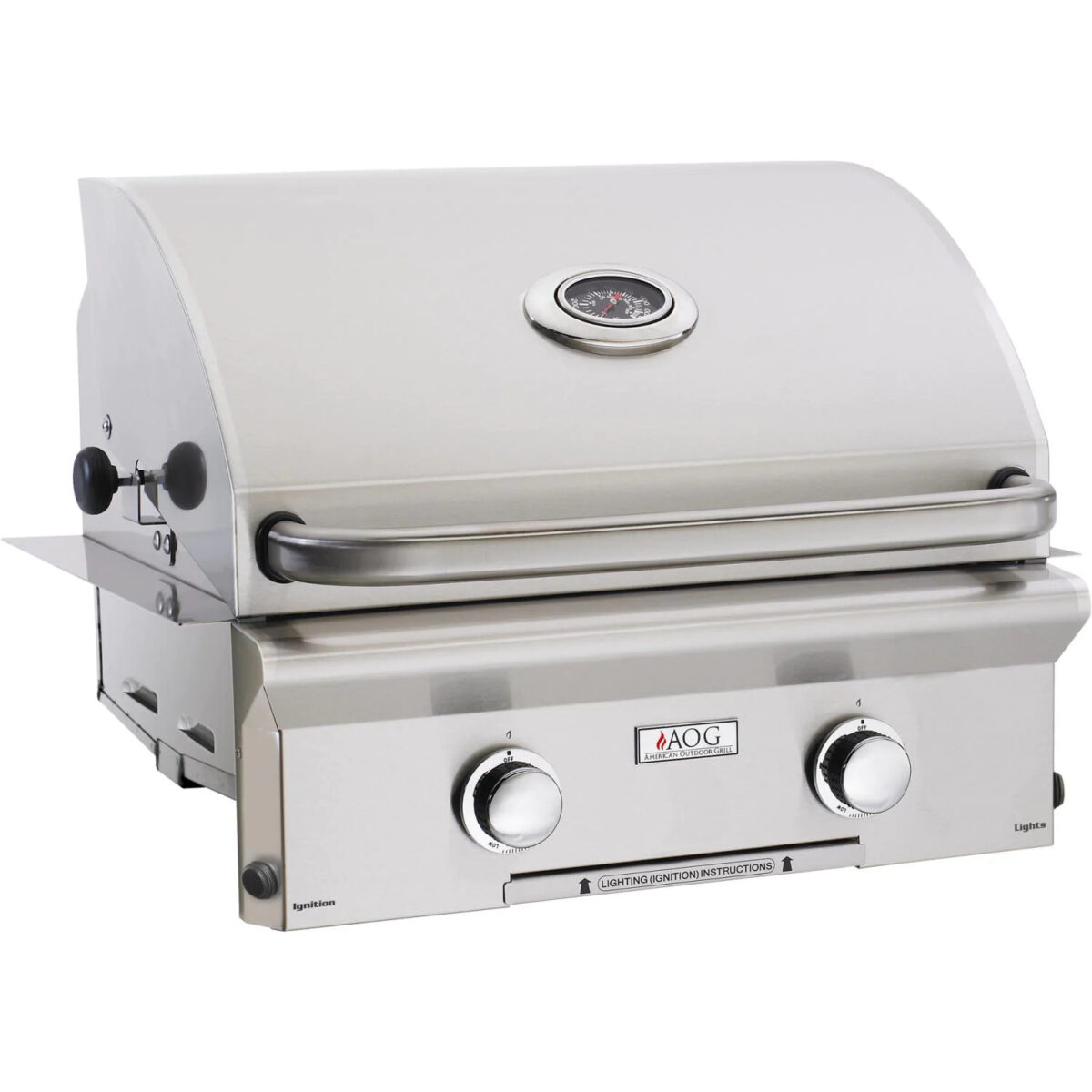 American Outdoor Grill L Series 24 Inch 2 Burner Built In Gas Grill