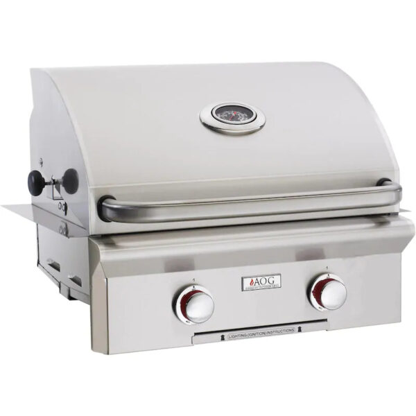 American Outdoor Grill T Series 24 Inch 2 Burner Built In Gas Grill